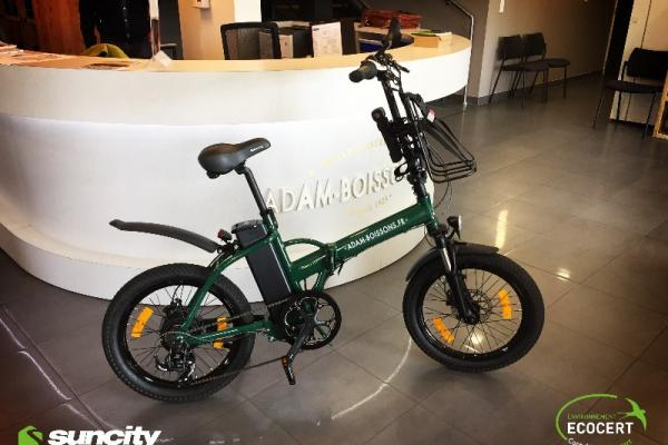 Equiper son entreprise de Vélos à Assistance Electrique : comment faire le bon choix ?